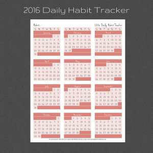 What daily habit do you want in 2016