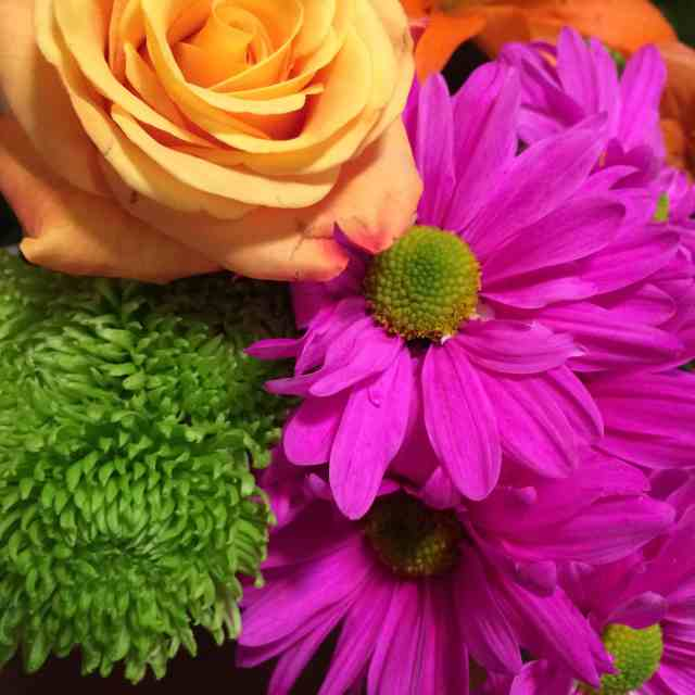 Monthly Goals - March - Valentine Flowers