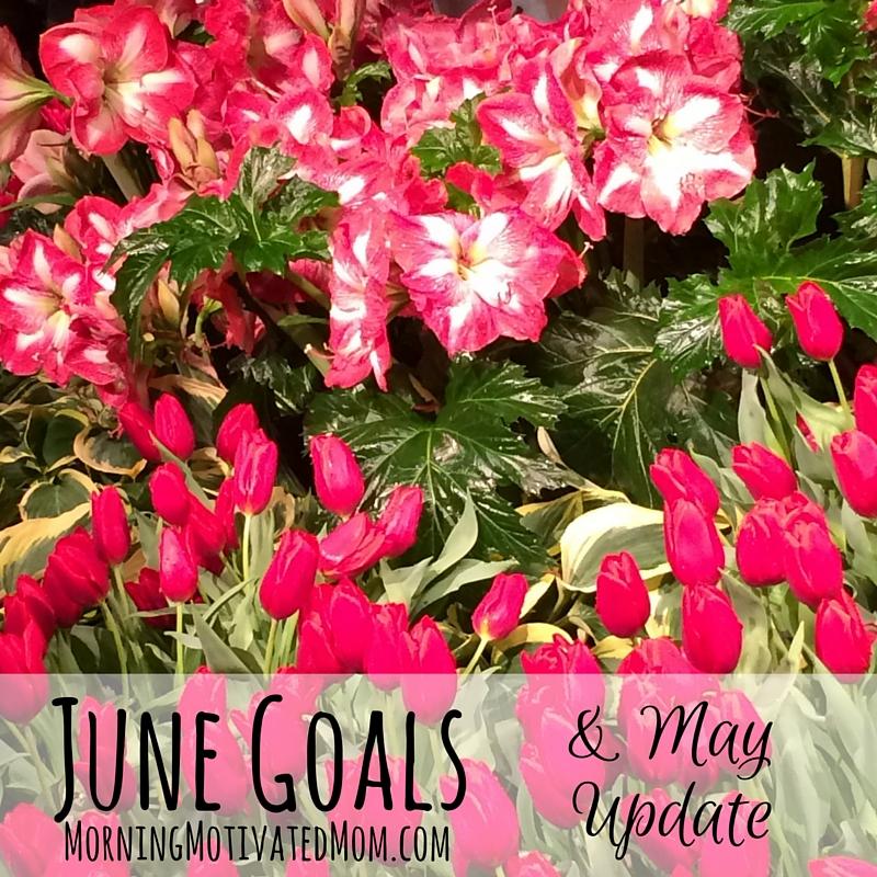 Monthly Goals - June