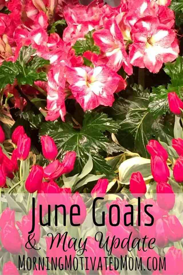 Monthly Goals – June Monthly Goalsetting and accountability.