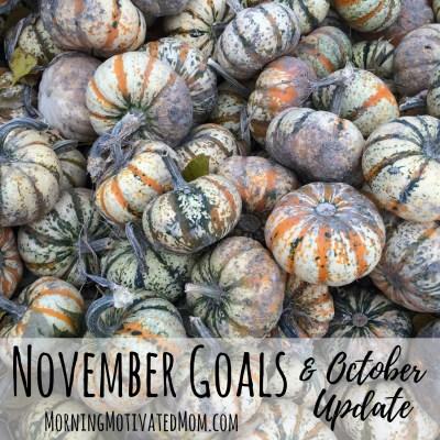 Monthly Goals – November