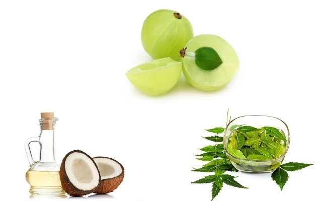 Azadirachta Indica, Indian Gooseberry and Coconut Treatment