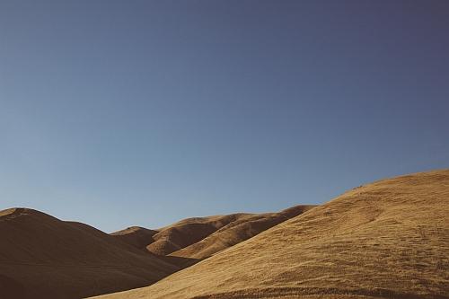 Majestic Vista