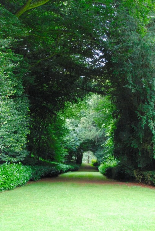 A view looking along the avenue at Rousham Park. This was the work of garden designers William Kent