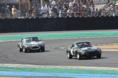 Jaguar Classic Challenge (19)