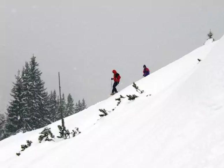 snowwhoe_17