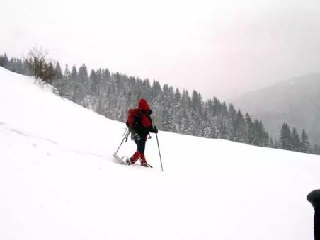 snowwhoe_31