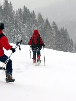 snowwhoe_32