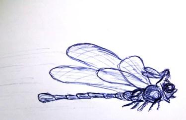 Libellenflug | Abgezeichnet von L'heure des fées, Pascal Moguérou
