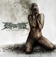 Ingested - The Surreption
