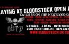 Pre-Bloodstock interview: Obey