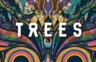2000 Trees Festival announces 2021 lineup