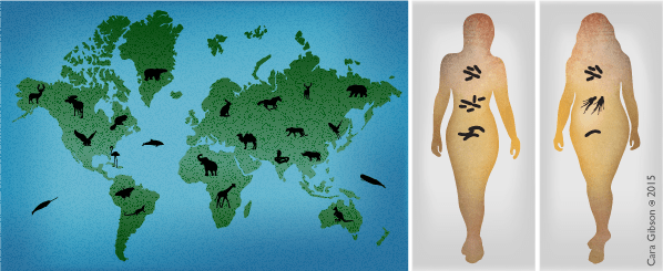 Humans as microbial ecosystems