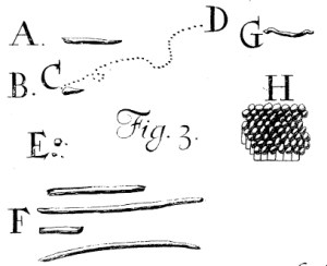 van Leewenhoeck's drawings of the bacteria he found in dental plaque.