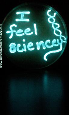 IMG_3274_feel_sciency