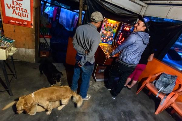 Pinball and dogs, Pacaya base.