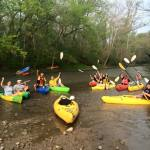 Float the Creek With Mudlick Tap House