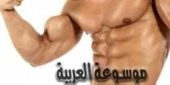 كيف يتم تضخيم العضلات بسرعة