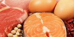 أهمية التغذية لكمال الأجسام