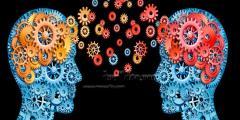 علم النفس علوم تهتم بتطبيق مجالات الحياة