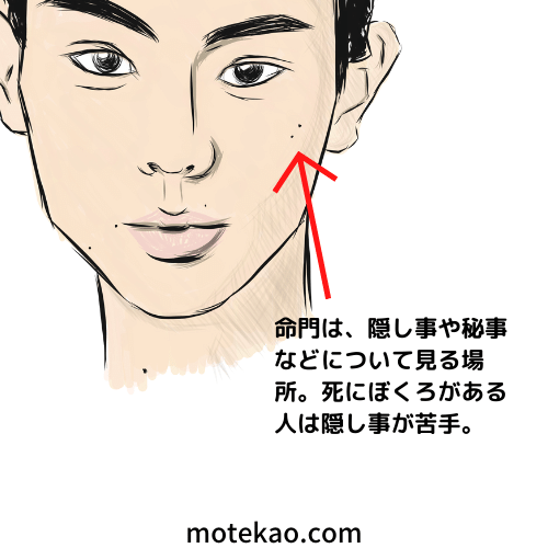 「左頬のほくろ」菅田将暉さんは仕事の事をペラペラ喋らない方が良い