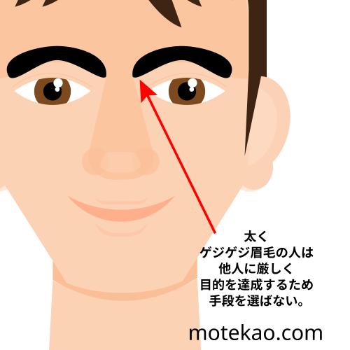 眉毛が太い・ゲジゲジ
