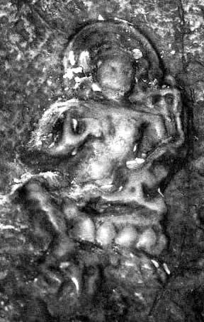 Image result for Rangjung image of Tara