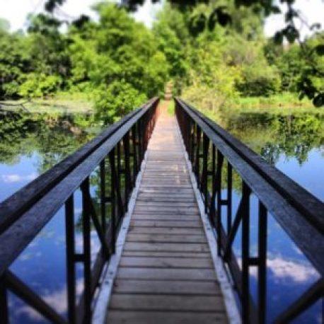 collegeville bridge - melissa