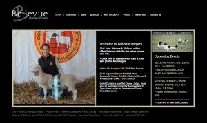 web design brisbane - old bellevue dorper site
