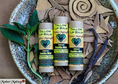 3 Infused Tallowed Touch Tallow Lip Balms in a stylized product photo.