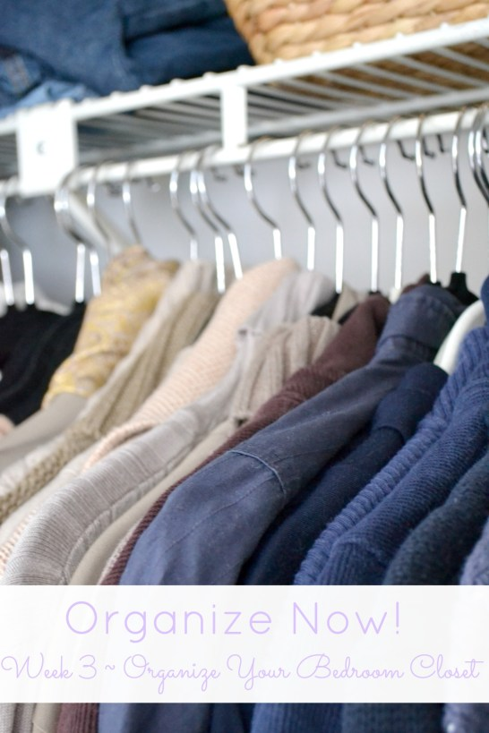 Organize Your Bedroom Closet   www.motherthyme.com