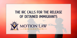 International Rescue Committee against immigration detention centers amid global pandemic