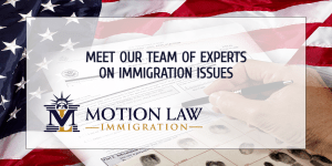 The importance of migrating with the help of experts