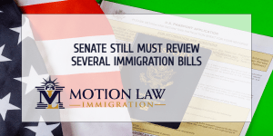 Senate must review immigration bills recently passed by the House