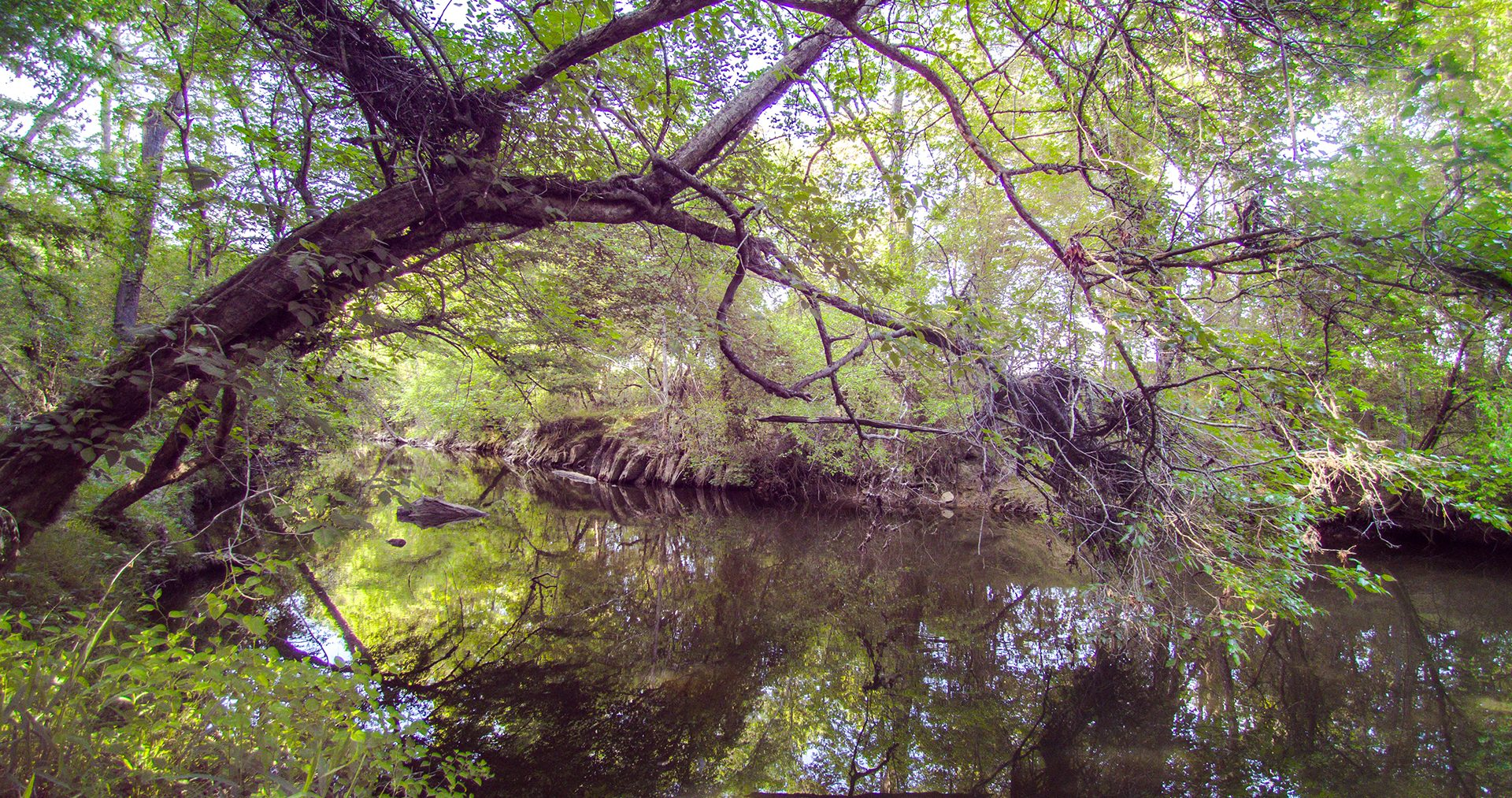 Hwy39-Little-River-Land-15
