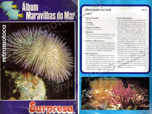 álbum maravilhas do mar