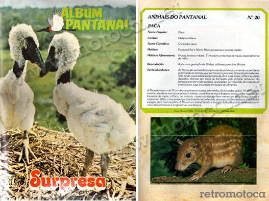 álbum pantanal - surpresa