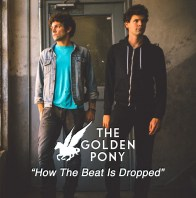 motodj-artists-the-golden-pony-021