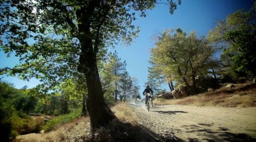 Nothing more fun than riding miles and miles of trails