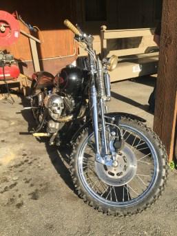 Dual Sport Harley?