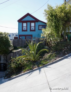 Bradford Street, far off all tourism, is THE steepest road in SF (close to 45%)