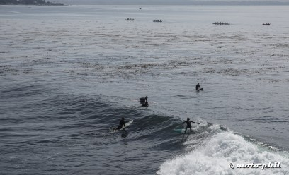 Surfers in Santa Cruz