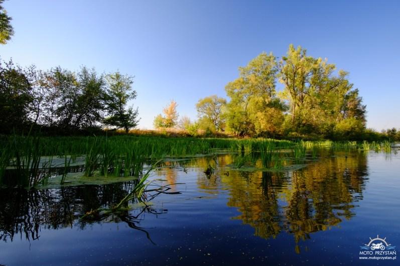 Spływ Bzurą wśród morza traw