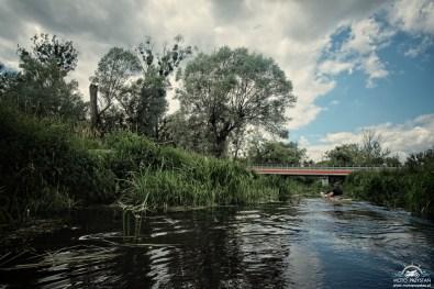 Most nad Utratą w Strzyżewie