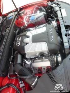 Audi-S5-MotorAdictos (43)