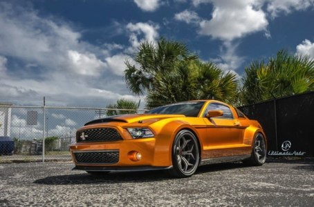 shelby-ma-super-snake-ultimate-2