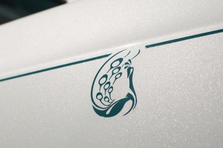 Rolls-Royce-Phantom-Drophead-Coupe-Maharaja-4