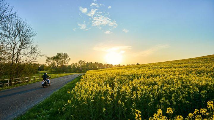 spring motorcycle