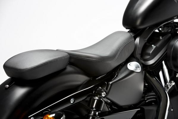 harley-davidson-2013-sportster-iron-883-special-edition-1
