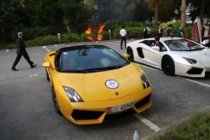 Lamborghini Fire Bushes